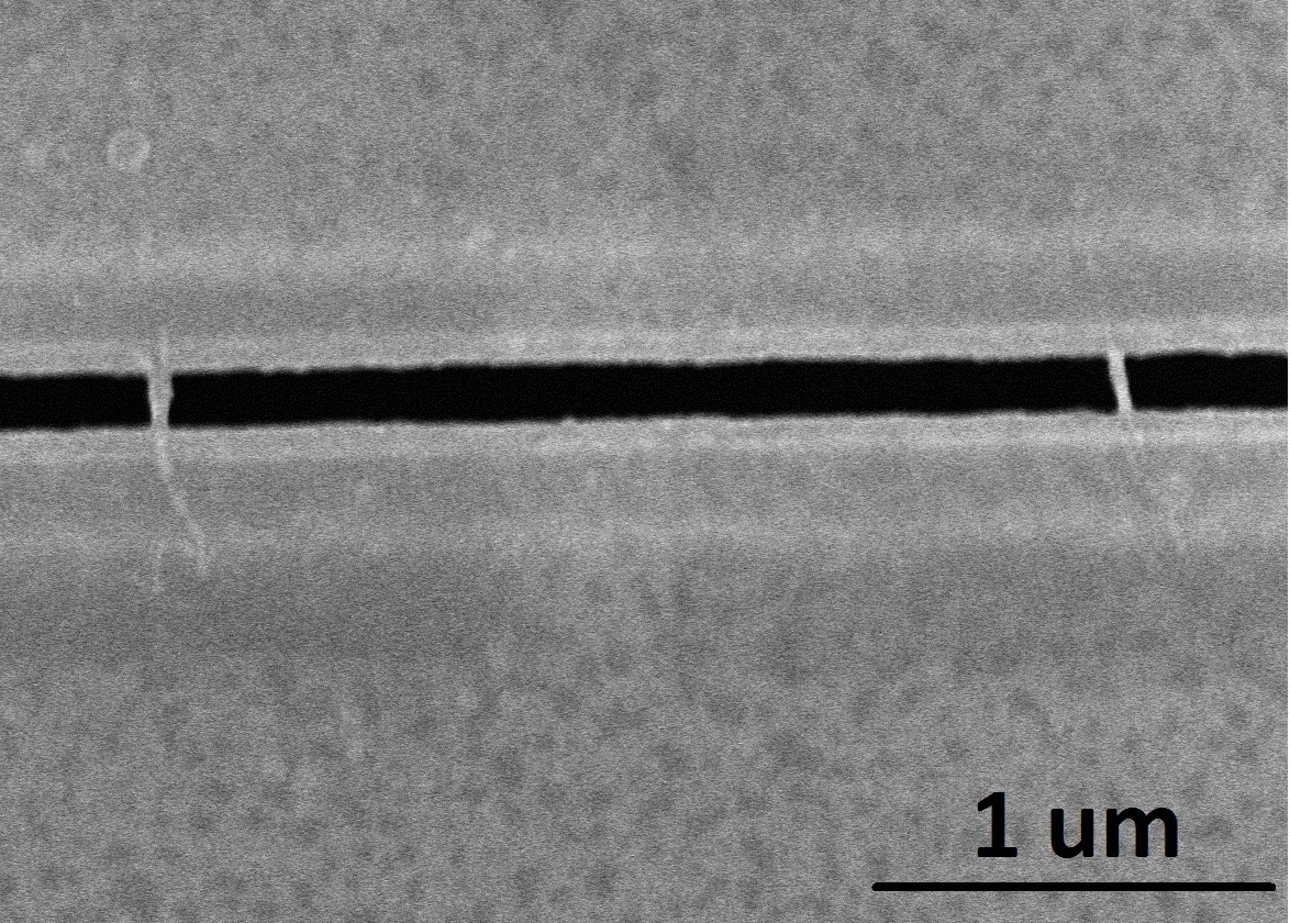 An SEM image of Device 7715s1. Two nanowires (gray) lay across a 140 nm wide trench (black). The distance between the wires is 2.5