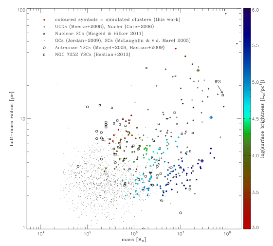 Mass-size diagram of the stellar objects formed during the simulation and detected at the final coalescence (epoch D), shown with coloured dots. The colour represents the surface brightness of the cluster, computed from equation(
