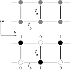 Schematic picture of ladders, with hopping matrix elements