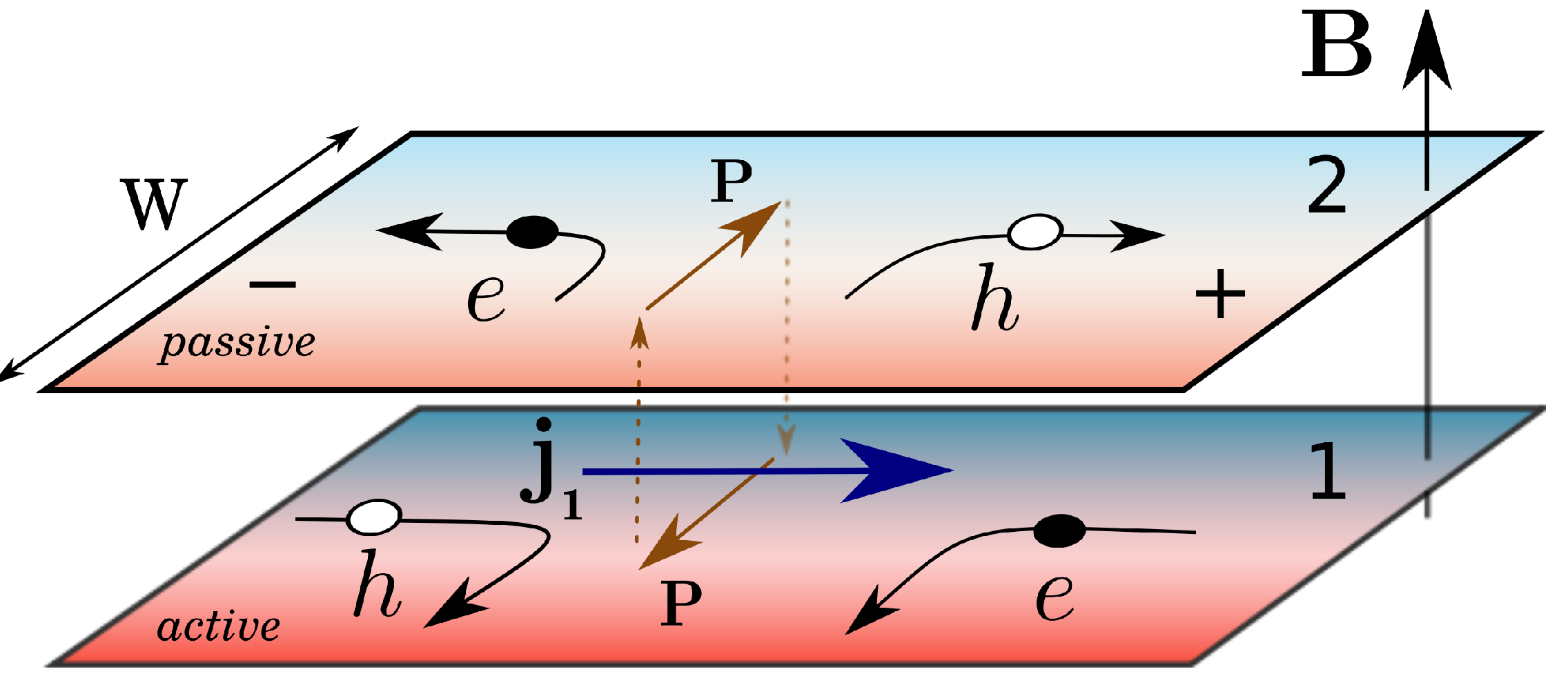 Qualitative mechanism of magnetodrag in graphene. Top panel: infinite sample, where the lateral quasiparticle flow (denoted by