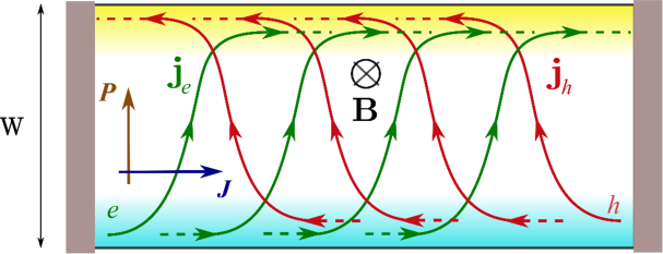 Electron (green) and hole (red) currents in a finite graphene sample. The quasiparticle flow (denoted by