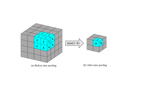 Max pooling operation in the 3D-CNN model.