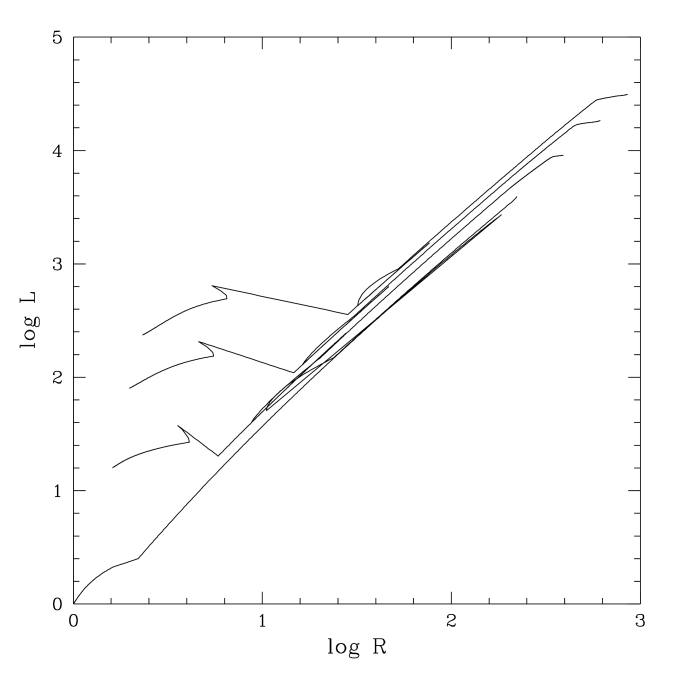 Plot of log(luminosity) as a function of log(radius), both given in solar units, for 1, 2, 3, and 4 M