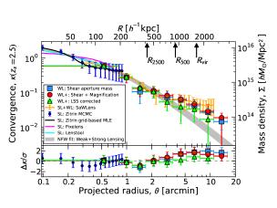 Surface mass density profile
