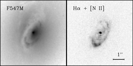 An example of a dusty emission-line disk: