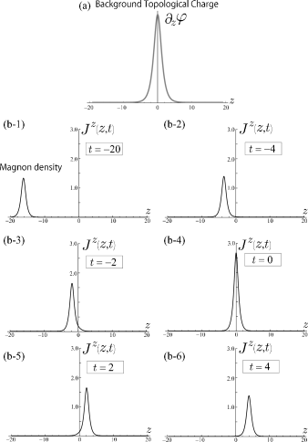 (a) The background topological charge