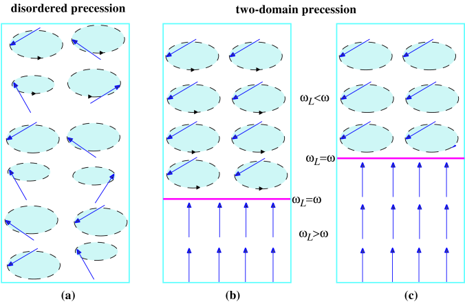 (a) Disordered precession after pumping of magnons spontaneously evolves into (b) two domains: Homogeneously Precessing Domain (HPD) with the Bose condensate of magnons, and the domain with static magnetization and no magnons (NPD). (c) The Bose condensate decays due to non-conservation of the number of magnons. However, phase coherence is not violated, and even the density of the Bose condensate