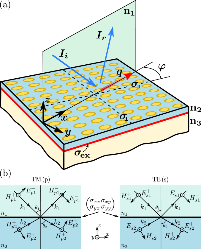 (a) Schematic representation of a light scattering at the plasmon-exciton hybrid metasurface consisting of 2D uniaxial plasmonic array with effective conductivities along (