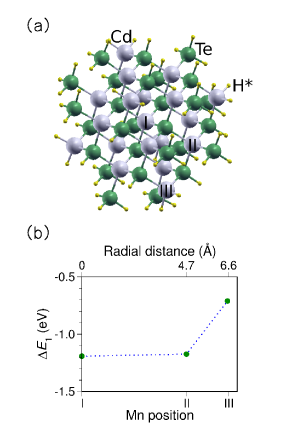 (Color online) (a) Nanoparticle of (Cd,Mn)Te with 107 atoms: Cd atoms with light gray, Te atoms with dark gray (green) and passivating