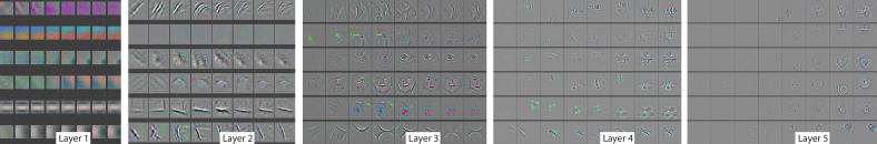 Evolution of a randomly chosen subset of model features through training. Each layer's features are displayed in a different block. Within each block, we show a randomly chosen subset of features at epochs [1,2,5,10,20,30,40,64]. The visualization shows the strongest activation (across all training examples) for a given feature map, projected down to pixel space using our deconvnet approach. Color contrast is artificially enhanced and the figure is best viewed in electronic form.