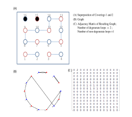 Graph theoretic formulation: Coverings 1 and 2 superimposed on each other