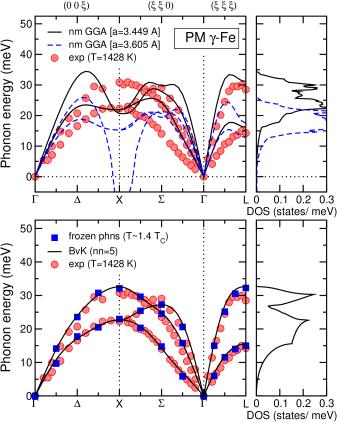 (color online) Phonon dispersion curves and corresponding phonon density of states of paramagnetic fcc Fe as calculated within the non-magnetic GGA (top) and DMFT (bottom). The results are compared with neutron inelastic scattering measurements at 1428 K