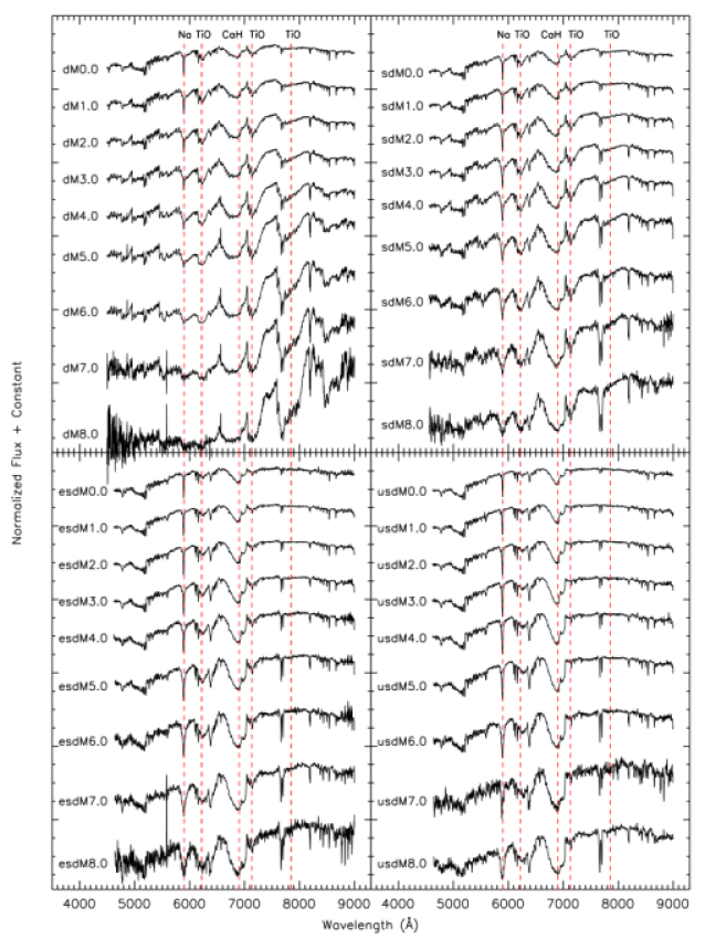 Sequence of synthetic classification templates assembled from SDSS spectra. Each of the four sets above shows a temperature sequence, with M0.0 stars being the warmest and M8.0 stars the coolest in the sequence. The four classes (dwarfs:dM; subdwarfs:sdM; extreme subdwarfs:esdM; and ultrasubdwars:usdM) allegedly represent a metallicity sequence, with the dwarfs (dM) being the most metal rich and the ultrasubdwarfs (usdM) the most metal-poor. Late-type templates are noisier due to the smaller number and higher signal-to-noise of the SDSS spectra that were co-added to generate the templates.