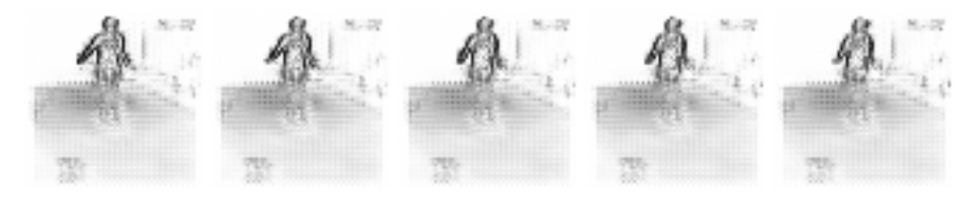 Quantitative and qualitative results on human motion video predictions with a