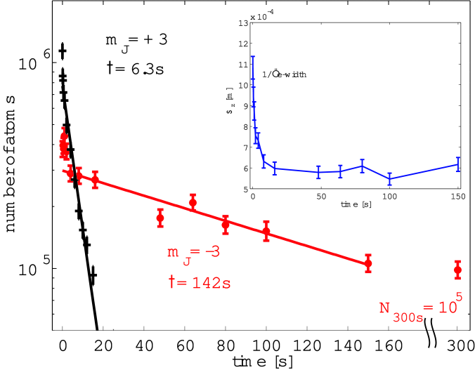 Comparison of trap lifetimes before (crosses) and after (circles) pumping the atoms to the lowest Zeeman substate. The inset shows the change of the axial size of the expanded cloud in time of flight after different holding times.