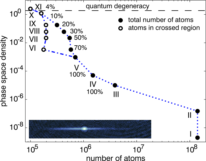 Evolution of phase space density vs. number of atoms during the whole preparation process starting with