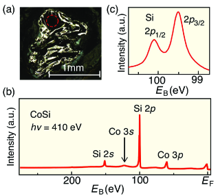 (a) Optical-microscope image of cleaved CoSi crystal with a flat surface area indicated by red circle. (b) EDC of CoSi in a wide energy range measured with