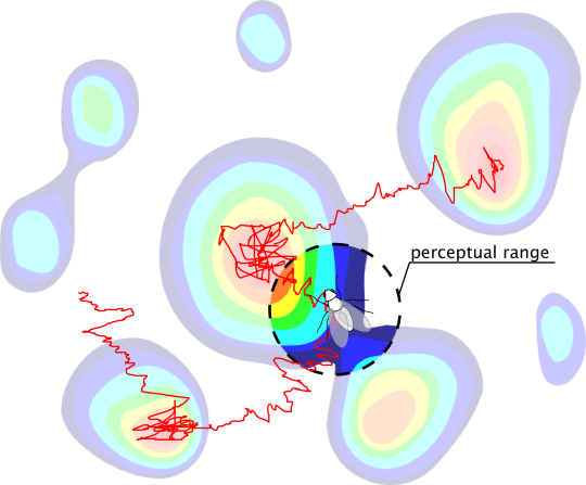A searcher with a finite perceptual range navigating a heterogeneous landscape using a biased random walk search strategy. In contrast to standard local searchers, which navigate based only on point-wise information, our searcher can use non-local information within its perceptual range to optimise its movement and exploration.