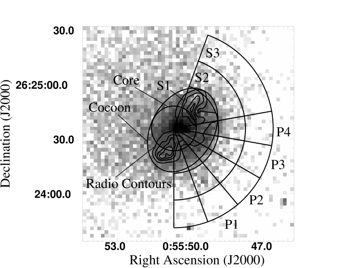 Image of the central region of the northern sub-cluster. The Gray scale map shows the X-ray brightness and the contours show the 1.4 GHz radio brightness. The pie slices P1, P2, P3, and P4 have been used to extract the surface brightness profiles in Fig.