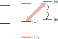 (Color online) Level scheme required for the spin-shelving protocol. The thick red arrow illustrates the strong drive between