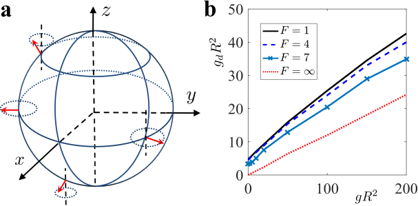 (Color) Modulated dipolar orientation on the spherical surface and the critical