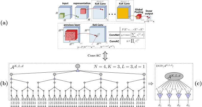 A deep overlapping convolutional network, in which the convolution kernels are of size