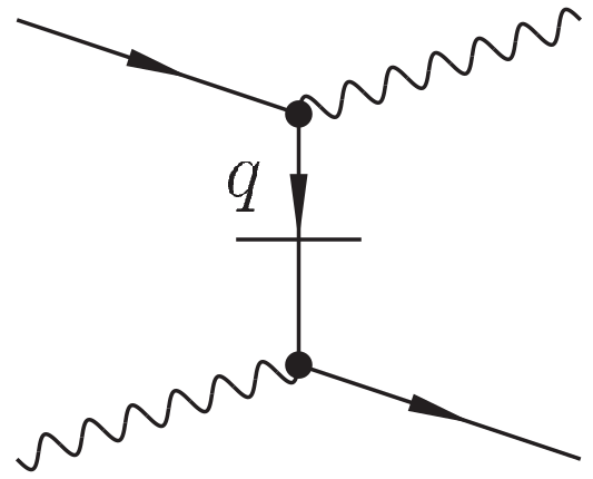 Vertices that appear in the