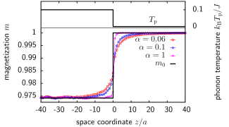 Steady state magnetization