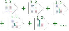 (Color online). Schematic of the many body wavefunction