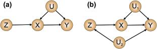 DAG (a) represents the instrumental scenario. DAG (b) allows for a common ancestor between