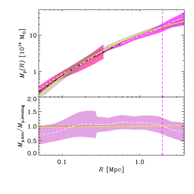The projected mass profile