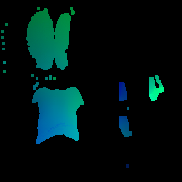 Synthesized selfie coordinate-map