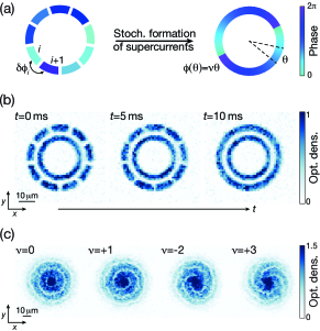 Experimental protocol. (a) Illustration of the experimental sequence. An annular trap is partitioned into