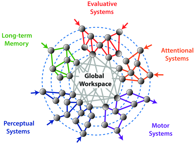 The Global Workspace emerges by connecting different brain areas according to Dehaene.
