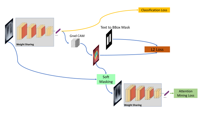 Flowchart of loss calculation: Starting from left, a chest X-ray is fed into the network and its classification loss (yellow) is calculated. Afterwards, using Grad CAM, the activation map is extracted. Using the bounding box mask from Stage 1 and the activation map the pixel wise L2 loss (orange) is calculated. Finally, the same activation map is used to soft mask the original chest X-ray image. The soft-masked image is fed again into the same network and its attention mining loss (green) is calculated. Note the network weights are shared between between all the loss calculations. Image modified from source: