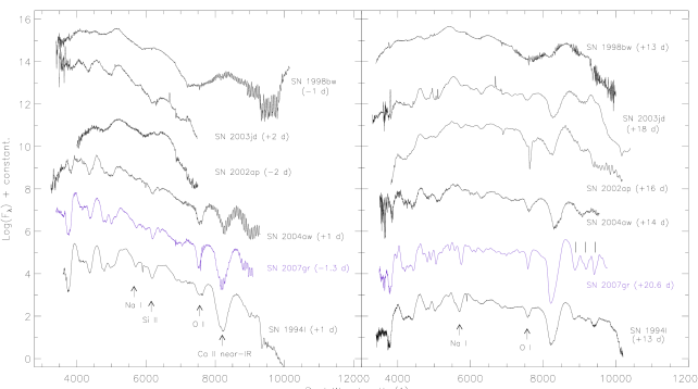 Comparison of spectra of SNe close to