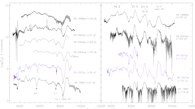 Comparison of spectra of SNe about one month (left) and four months (right) after