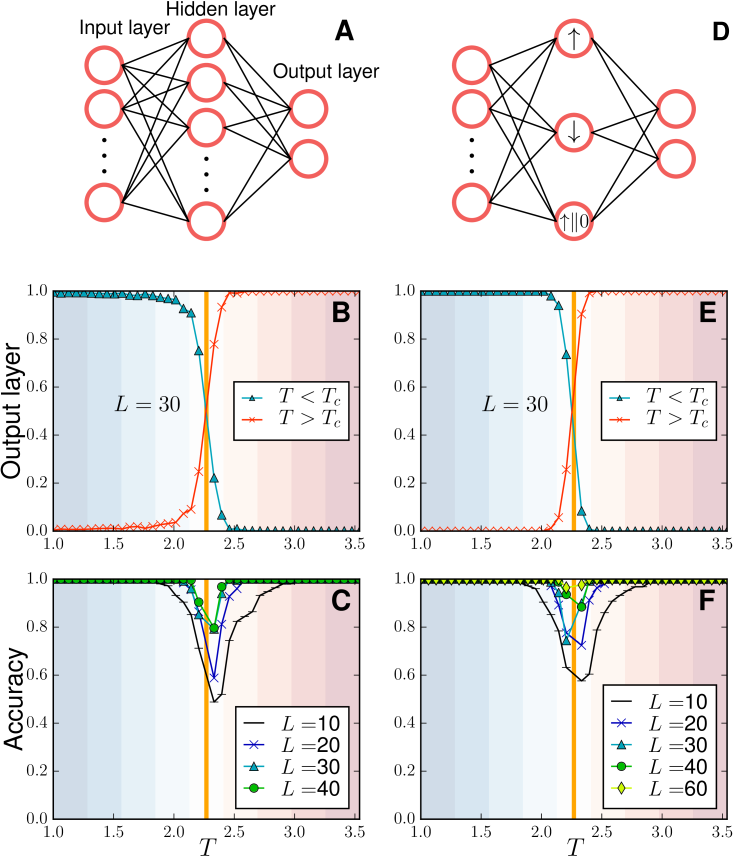 Machine learning the ferromagnetic Ising model. (A) The trained neural network learns representations of the low- and high-temperature Ising states. The average output layer (B) and accuracy (C) over the test sets vs.temperature. (D) Toy model of a neural network for the Ising model. (E) The average output layer and accuracy of the toy model are displayed in (E) and (F), respectively. The orange lines signal