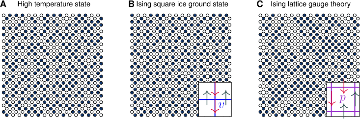 Typical configurations of square ice and Ising gauge models. (A) A high-temperature state. (B) A ground state of the square ice Hamiltonian. (C) A ground state configuration of the Ising lattice gauge theory. The vertices and plaquettes defining the square ice and Ising gauge theory Hamiltonians are shown in the insets of (B) and (C).