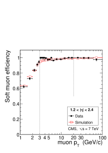 Tag-and-probe results for the muon efficiency