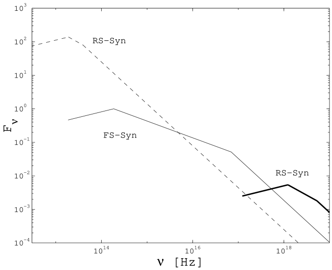 Spectrum at the deceleration time: Reverse Shock SSC (thick solid) and Synchrotron (thin dashed) emission, and Forward Shock Synchrotron emission (thin solid).