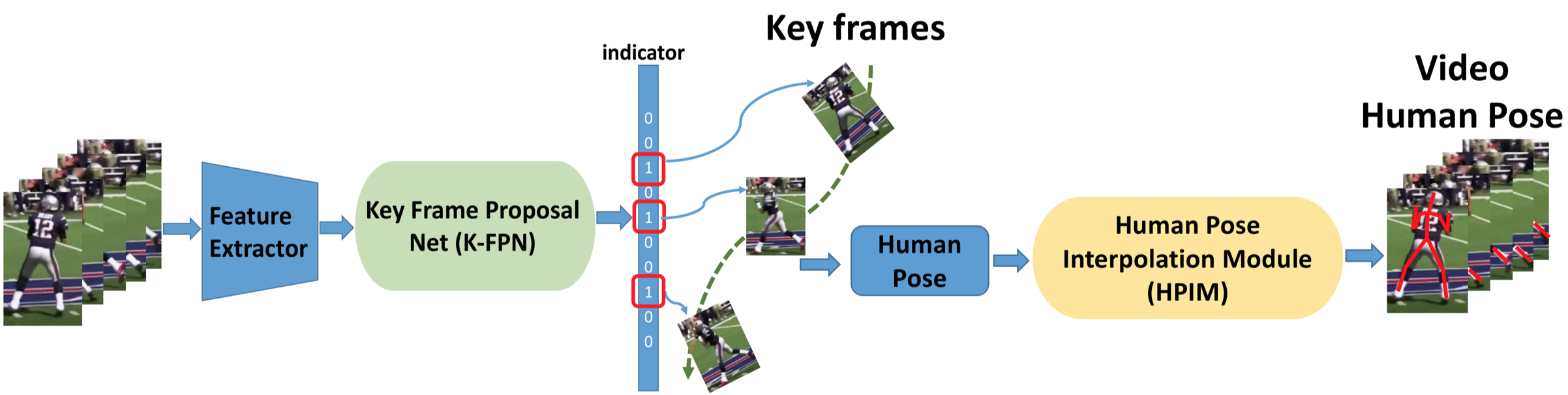 The K-FPN net, which is trained unsupervised, selects a set of key frames. The Human Pose Interpolation Module (HPIM), trained to learn human pose dynamics, generates human poses for the entire input sequence from the poses in the key frames.