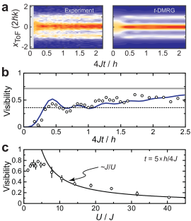 Build-up of short-ranged correlations. (a) Plot of the integrated density profiles obtained after ToF versus