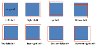 Spatial shifts. The amount of shift is 10% of width or height of the ground-truth bounding box.