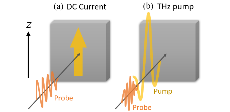 Two experimental approaches to observation of CISHG. (a) Standard SHG measurement with applying a DC bias voltage to induce a current. (b) Pump-probe-type SHG measurement. The pump pulse should be at low enough frequency compared to interband excitations that the induced state is the same as that created by a DC voltage, which for most materials extends up to the terahertz (THz) range.