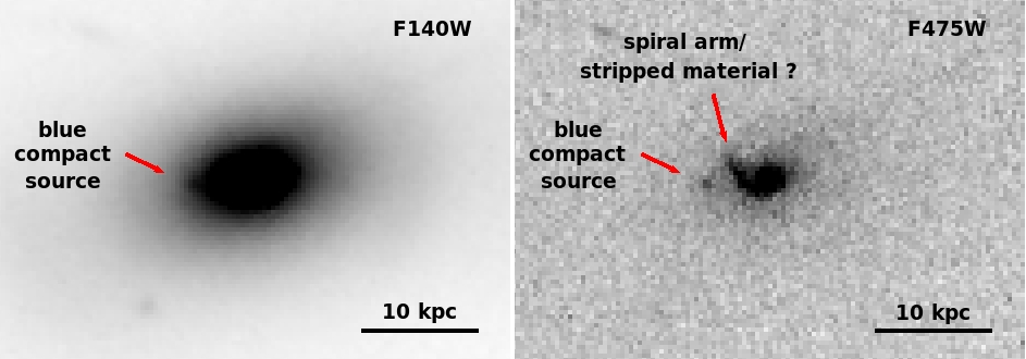: F140W image of the BCG center, the green cross point is located at the BCG center and the presence of a small source in the SE direction is highlighted by a red arrow.