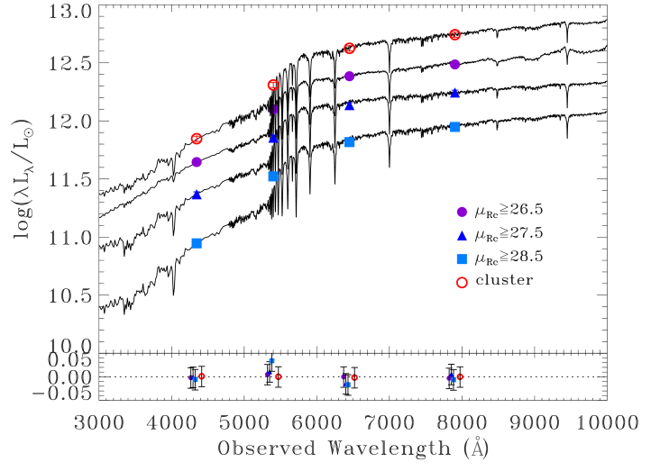 SED of the total cluster light within R
