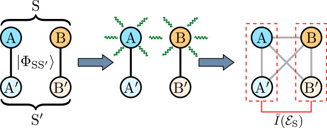 Schematics of the method. Left: the system S is prepared in a maximally entangled state