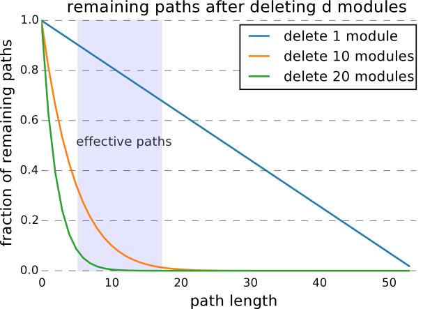 Fraction of paths remaining after deleting individual layers. Deleting layers mostly affects long paths through the networks.