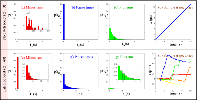 Probability distributions of runtimes for